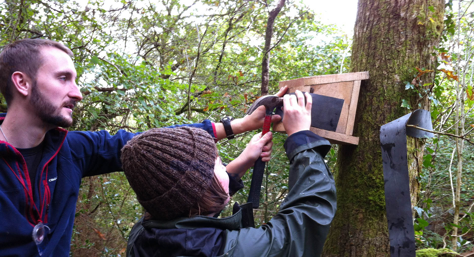attaching a bird box