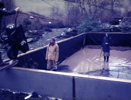 building a fish farm
