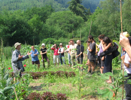 Group tour of CAT's organic gardens