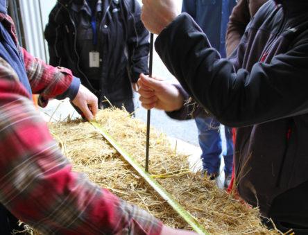 Dividing the bale