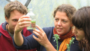Sustainable ecology water experiment