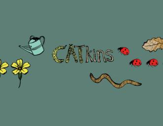 CATkins Parent and Toddler Group at CAT