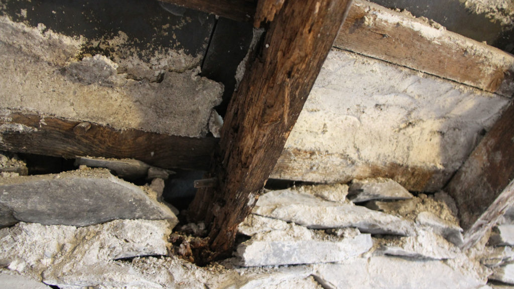 rotted roof joist