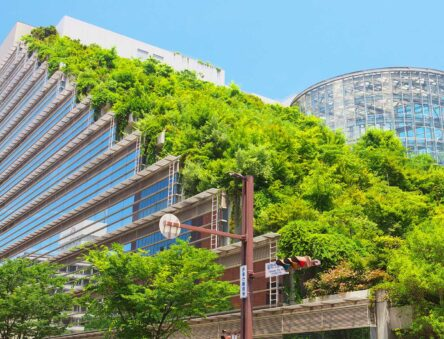 Green roofs, such as this example in Fukuoka in Japan, can help reduce flooding, enhance biodiversity and connect people to their environment. Credit: yyama / Shutterstock.com